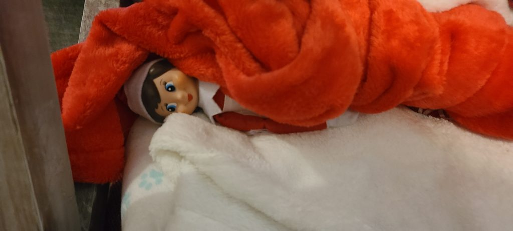 elf on the shelf hiding in the blankets
